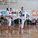 2008 Okinawa Tornament